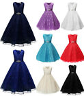 New Flower Girl lace Princess Dress Kid Party Pageant Wedding Bridesmaid Dresses