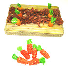 Rosewood Woodies Happy Hamster Rabbit Guinea Pig Gnaw Activity Carrot Garden