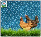 POULTRY NETTING 10' AVIARY CHICKEN GAME BIRD NETS PROTECTIVE PLANT GARDEN NET