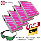 120W LED Grow Light LED Protective Glasses Great for Hydroponic Indoor Plants UK