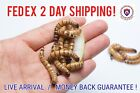 Live Superworms - Organically Raised - ALL SIZES / ALL COUNTS!  Free Shipping!