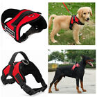 Large Pet Dog Harness Vest Collar Adjustable Soft Collar Walk Out Hand Strap US