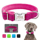 Reflective Personalized Nylon Dog Collars Soft Warm Padded Puppy Dog ID Collar