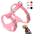 Bling Bling Dog Harness Padded Suede Leather For Small Dogs Chihuahua Yorkie