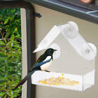 Hanging Acrylic Adsorption Type House Shape Bird Feeder Suction Cup Feeder