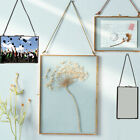 Metal Glass Double Sided Hanging Photo Picture Frame Dried Flower Leaf Frame