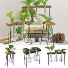 Wooden Stand Glass Terrarium Container Hydroponics Plant Planter Flower Pot Desk