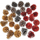 Supla 30 Pcs Assorted Natural Pinecones Frosted Gold Red Pine Cones Ornaments