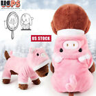 Cute Small Dog Sweater Girl Pink Pig Puppy Clothes Hoodie Warm Coat Pig Costume