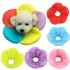 Comfortabe Recovery Pet Cone E-Collar for Cats/Small Dogs Elizabethan Collar USA