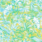 Lilly Inspired Beach Gypsies Adhesive Vinyl & HTV Sheets