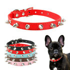 1 Row Spiked Studded PU Leather Puppy Cat Dog Collars for Small Medium Dogs