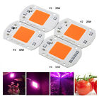 20/30/50W Full Spectrum LED COB Chip Grow Light Plant Growing Lamp Bulb 220/110V