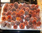 Внешний вид - Real PINE CONES - Ships in 24 Hours -Choose Size Mini/Small/Med/Large/Assortment