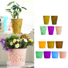 Plastic Garden Flower Plant Herb Planting Robust Pot with Drainage