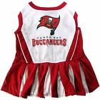 Tampa Bay Buccaneers NFL Football Officially Licensed Dog Cheerleader Dress Sm $14.9 USD on eBay