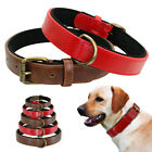 Genuine Leather Dog Collar Soft Padded with D-ring for Large Dogs Brown Collar