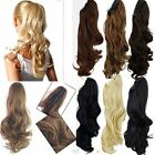 Clip in Ponytail Hair Extension Hairpiece Ash Sandy Blonde Plum Red Brown ginger