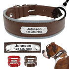 Personalised Dog Collar Leather Reflective Soft Adjustable ID Name Tags Collar