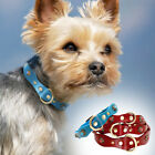 Studded Diamond Leather Dog Collar for Small Medium Dogs Jack Russell Beagle Red