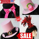 Mini Top Hat Feather Pink Gothic Lolita Burlesque Steampunk Saloon Girl Costume