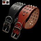 Spiked Studded Real Leather Dog Collar for Large Dogs Rottweiler Labrador Boxer