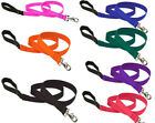 Lupine Dog Leash Lead allsizes red black blue pink etc Pet Leashes Leads