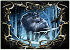 Wolf #19 - Dark Wolf Looking - Laptop or Notebook Skin Decal - Many Sizes NEW