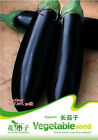 Eggplant Seeds Vegetable Seeds Long Round Organic Natural Nutritious Foodstuff