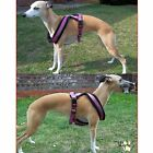 Padded Soft Medium Dog Harness Fleece Nylon Collie Beagle Whippet Trixie M