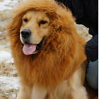 Lion Mane Wig Halloween Pet Costume Cat Fancy Dress Up Clothes for Large Dogs