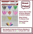 100 QUALITY GOOSE QUILL FEATHERS 10cm to 15cm / ARTS & CRAFTS / CARD MAKING /