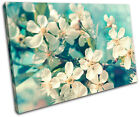 Cherry Blossom Teal Floral SINGLE CANVAS WALL ART Picture Print VA