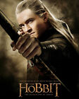 Bloom, Orlando [The Hobbit] (53869) 8x10 Photo