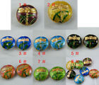 20pcs Cloisonne Enamel Dragonfly Flat Spacers 18x6mm 8colors-1 O53