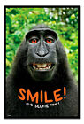 Framed Smile! It's Selfie Time Monkey Poster New