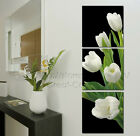White Tulips Top Quality Canvas Art Print Set Of 3 Choice Of Clock Diff Sizes