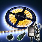 5M LED strip 3528 SMD with power adapter connector switch extra-bright UK