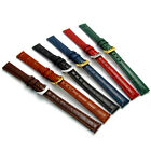 Coloured Padded Croc Grain Leather Watch Strap Band 10mm 12mm 14mm 6 colours!