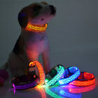 1pcs Pet Dog Colorful Flash Necklace LED Light Up Glow - MIX Color (size - s#)