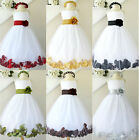 Gorgeous White red gold silver sage black  rose petals flower girl party dress