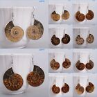 25-37mm ammonite fossil dangle earrings *each one pictured*
