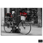 Retro Bicycle  Red Vintage BOX FRAMED CANVAS ART Picture HDR 280gsm