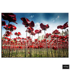 Tower of London Poppies   City BOX FRAMED CANVAS ART Picture HDR 280gsm