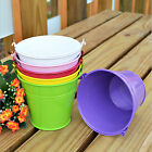 Newly Mini Bucket Colored Wedding Party Favour Keg Box Gift Pails Candy Lolly