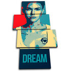 Ruby Rose Dream Abstract MULTI CANVAS WALL ART Picture Print VA