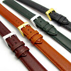 Padded Denver Leather Watch Strap Extra Long XL 16mm 18mm 20mm 4 Colours D010