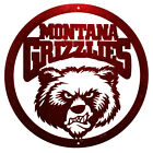 MONTANA GRIZZLIES Steel Scenic Art Wall Design