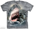 The Mountain Shark Attack SHARKATASTROPHE  Adult Men T-Shirt S-2XL Short Sleeve
