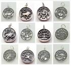 925 Sterling Silver HOROSCOPE Zodiac Astrology STAR SIGN Charm PENDANT